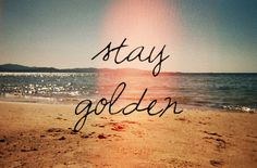 stay golden #summer #quotes