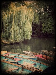 Landscape Photograph  Punting Boats by PaintedCity on Etsy, $20.00
