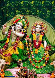 What a historical love bird Lord Krishna Images, Radha Krishna Pictures, Radha Krishna Photo, Krishna Photos, Radhe Krishna Wallpapers, Shri Hanuman, Durga, S8 Wallpaper, Happy Elephant