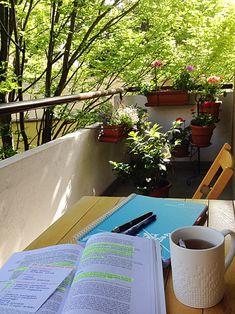 I love studying outside