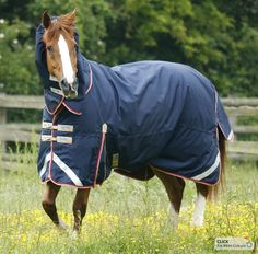 English Tack Store - Premier Equine Buster Trio Complete Turnout Blanket (http://www.englishtackshop.com/premier-equine-buster-trio-complete-turnout-blanket/)