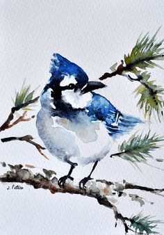 ORIGINAL Watercolor Blue Jay Bird Greeting Card by ArtCornerShop