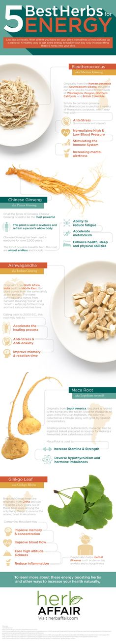 5 Best Herbs for Energy (Infographic)