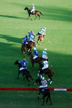 Polo.  If you've never tried this sport, don't knock it.  It's fast, tough, dangerous and beautiful.