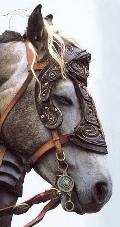 "This is Arod, a character horse in the movie, ""Lord of The Rings.""  Arod was ridden by Legolas (Orlando Bloom) in the movie, and played by a Percheron cross stallion, called Percy.  Bloom said that Percy was the friendlest horse on the set."