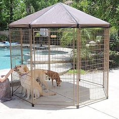 Outdoor Pet Gazebo Pavilion Nylon Tote Stakes Large Open Wire Enclosure Dog Cage