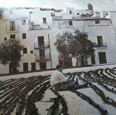 Ibiza Formentera, History, Outdoor, Countries, Pictures, Outdoors, Historia, Outdoor Games, The Great Outdoors