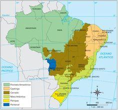 Biomas brasileiros - Santa Catarina
