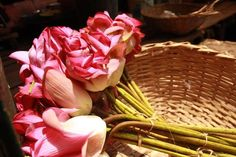 cover photo Cover Photos, Wicker Baskets, Cabbage, Vegetables, Flowers, Marketing, Food, Home Decor, Decoration Home