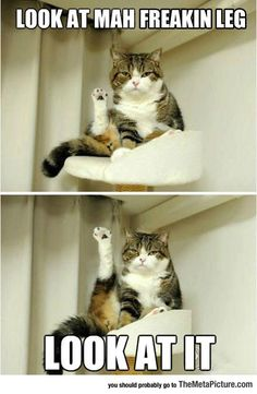When I shave my legs