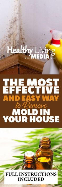 Save your money and time, and use this home made DIY natural spreay and get rid of the mold in your house.
