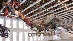 Large Phoenix James and I saw at Mass Moca... for Mythology Project... Photo credit: Keifer Gammel