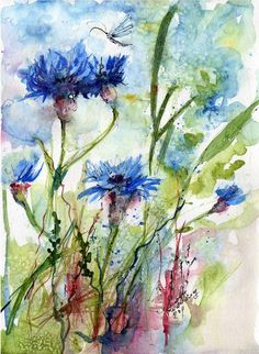 Image from http://thumbs.imagekind.com/3902559_650/Cornflowers-Wildflower-Watercolor-by-Ginette_art.jpg.