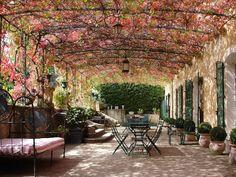 What an incredible garden.