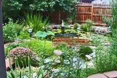http://fineartamerica.com/featured/right-side-of-my-backyard-garden-annie-johnson.html