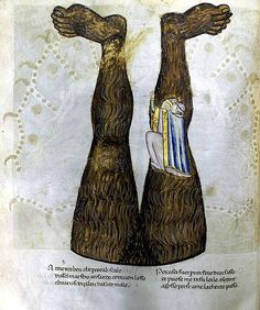 The Codex Altonensis, is an illustrated ms. of Dante Alighieri's Divine Comedy, produced between 1350-1410 C.E.