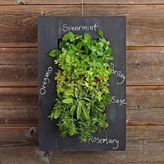 Chalkboard Wall Planter: Grow your favorite herbs and turn them into a conversation piece with this vertical chalkboard planter that you can securely mount on your wall. Not only it looks cool, but it's a great way to save some countertop space.