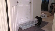 This Guy Set Up A Water Trap To Stop His Cat From Opening The Bedroom Door... It Didn't Work.