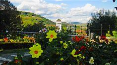Sighisoara, #Romania