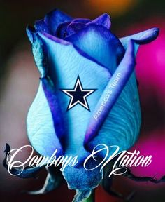 Cowboys for life! Dallas Cowboys Decor, Dallas Cowboys Quotes, Dallas Cowboys Wallpaper, Dallas Cowboys Pictures, Dallas Cowboys Football, Football Field, Football Team, Football Helmets, Cowboy Images