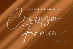 Crimson Foam // Chic Stylish. by Moovied Co. on @creativemarket Creative Fonts, Cool Fonts, Creative Studio, Calligraphy Practice, Modern Calligraphy, Typography Fonts, Typography Design, Font Shop, Character Map