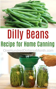 Dilly Beans, Dilly Bean Recipes, How to Can Dilly Beans, How to Can Green Beans, Canning Recipes Dilly Beans Canning Recipe, Canning Pickles, Canning Salsa, Home Canning Recipes, Canning 101, Easy Canning, Jam Recipes, Chutney, Pickled Green Beans