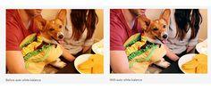 #Fotografía #Google_Fotos Google Fotos suma una nueva función para corregir los colores de nuestras fotografías