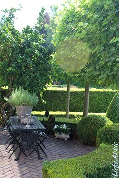 Hedges and feature trees