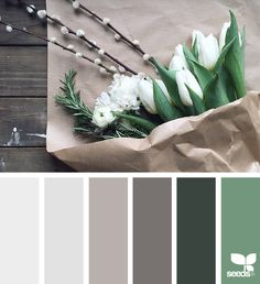 today's inspiration image for { flora tones } is by . thank you, Alyssa, for such an inspiring image share! Bedroom Color Schemes, Colour Schemes, Color Combos, Bedroom Colors, Pantone, Design Seeds, Colour Pallette, Color Balance, Colour Board