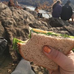 This yummy  featuring spicy salami by @thetinyvegan94 really saved my bacon (excuse the pun!) on my hike to the top! So glad I picked it up at @orchardgrocer after @mooshoes_nyc 16th anniversary party last weekend. . . . . #shoplocal #vegansalami #veganfood #meatlessmonday #hiking #sandwichporn #whatveganseat