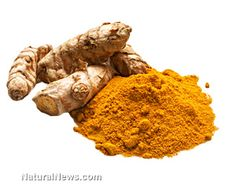 Researchers are investigating the benefits of turmeric for treating Alzheimer's, cancer, diabetes, arthritis, HIV, cataracts, gallstones, endometriosis, atherosclerosis, heart attacks, and more! http://www.naturalnews.com/042335_turmeric_phytochemicals_vitamins.html