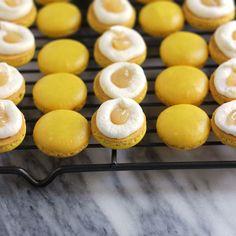 Triple Lemon Macarons  Aaaaaaahhhhhhhhh  I love lemon. Almost as much as ginger.  Not as much as ginger.