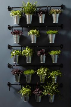 'Vertical gardening is one of the best ways to bring the outdoors in if you're short on room,' says Anna Ohlin, IKEA range communicator. 'Find unused spaces to fill with green. It has a relaxing effect and when you see your plants grow, you grow a little too'