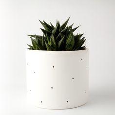 Wysokiej jakości biała doniczka ceramiczna, szkliwiona. Grafika malowana ręcznie według autorskiego projektu. WZÓR - KROPKI  Doniczka nie posiada dziury na odpływającą wodę, zalecamy więc stosować drenaż z drobnych kamyków.  Produkt sprzedawany bez rośliny.  ↔ szerokość 15cm ↕ wy...