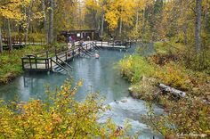 Stock Photos of Laird River Hotsprings, Provincial Park, British Columbia, Canada,