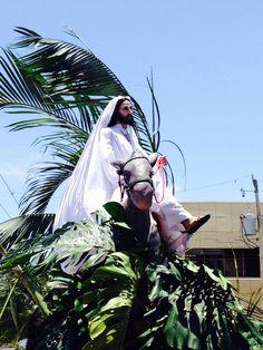 Domingo de Ramos Loreto
