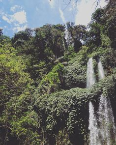 Waterfall, Tropical, River, Mountains, Green, Nature, Instagram Posts, Outdoor, Color