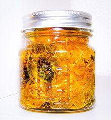 Calendula Infused Sunflower Oil