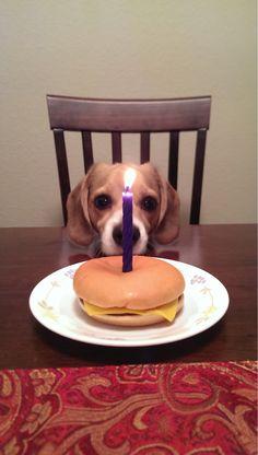 My friend said he was busy having a little celebration http://ift.tt/2mGd2m4