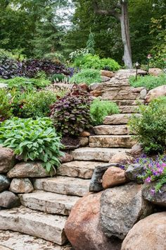 47 Gorgeous Perennial Garden Ideas If you have a stone walkway or steps you may consider letting some of your perennial bushes and flowers grow wild alongside these areas. It helps increase the rustic and naturalistic appeal of the area. Sloped Garden, Hillside Landscaping, Backyard Garden, Stone Landscaping, Landscape Design, Garden Stairs, Outdoor Gardens, Garden Design, Rock Garden Landscaping