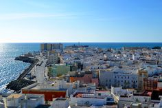 Views from the West Tower of the Cathedral of Cadiz, Spain. / San Sebastián Castle and Viña quarter Famous Marines, Andalusia, Cadiz Spain, National Portrait Gallery, Old City, Seville, Pilgrimage, Things To Know, Trip Planning