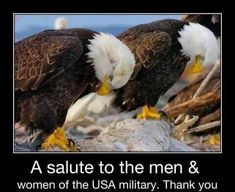 A salute to the U.S. Military. Thank you!