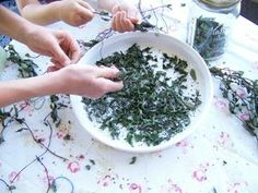 making tea from dried peppermint