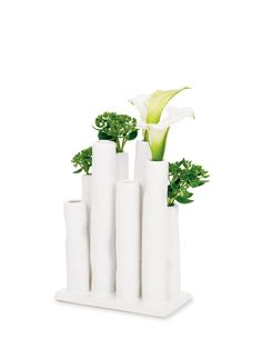 Keya Multi Tube Vase