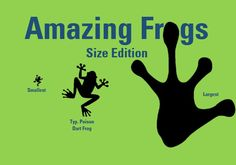 The first post in Amazing Frogs Series is the size edition. This will feature the smallest & largest frogs that are currently known. Frog Facts, Amazing Frog, Poison Dart Frogs, Terrarium, Wordpress, Big, Lady, Terrariums, Dart Frogs