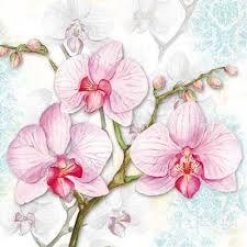 Resultado de imagen para dibujos de orquideas para bordar