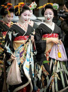 Mamekiku(まめ菊:前列左)、 Mamefuji(まめ藤:前列右)、 共に祇園甲部所属