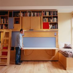 Dunn Queen Anne Condo, Storage wall with murphy bed and rolling ladder, Kerf