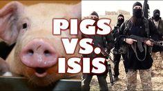 Pigs vs. ISIS: The Swine-11 Massacre