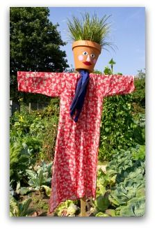Vegetable Garden Scarecrows Ideas, Pictures, and Video